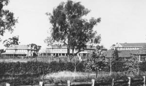 bloomfield-hospital